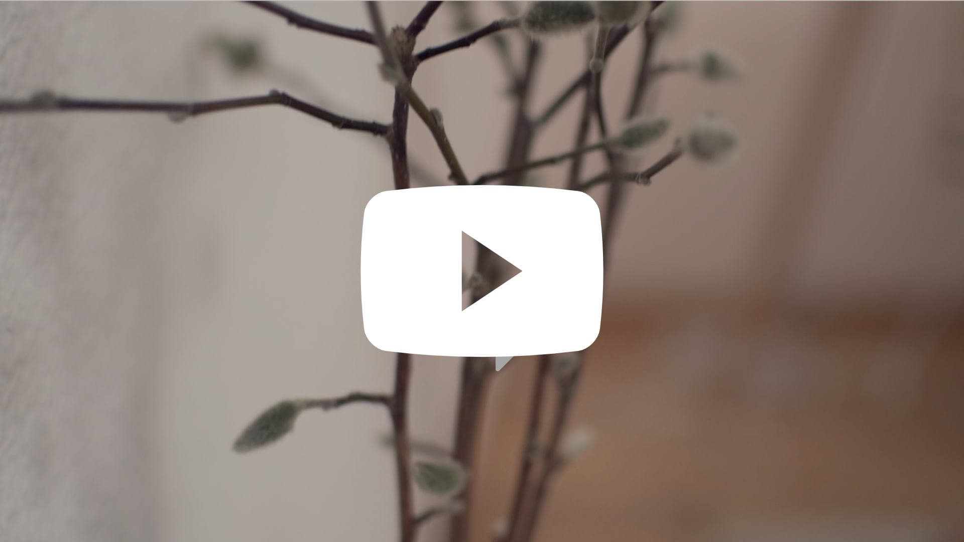 Youtube Video Kapha Yoga Flow